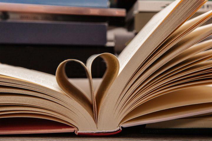 Querida Literatura: uma carta manifesto declaração de amor à literatura